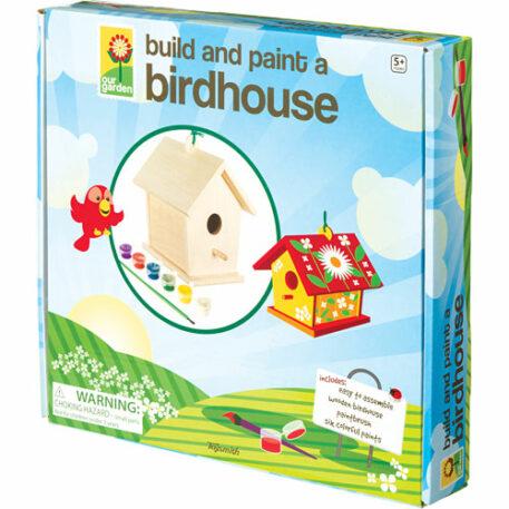Build And Paint Birdhouse