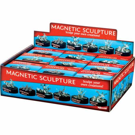 Magnetic Sculpture Asst