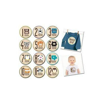 Sticky Bellies Baby Month Stickers - Aloetree