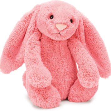Bashful Coral Bunny Medium