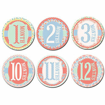 Sticky Bellies Baby Month Stickers - Garden Party