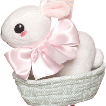 Lullaby Bunny Pull Musical Toy