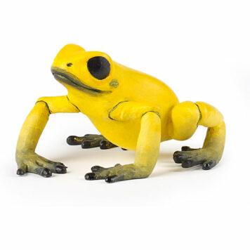 Equatorial Yellow Frog